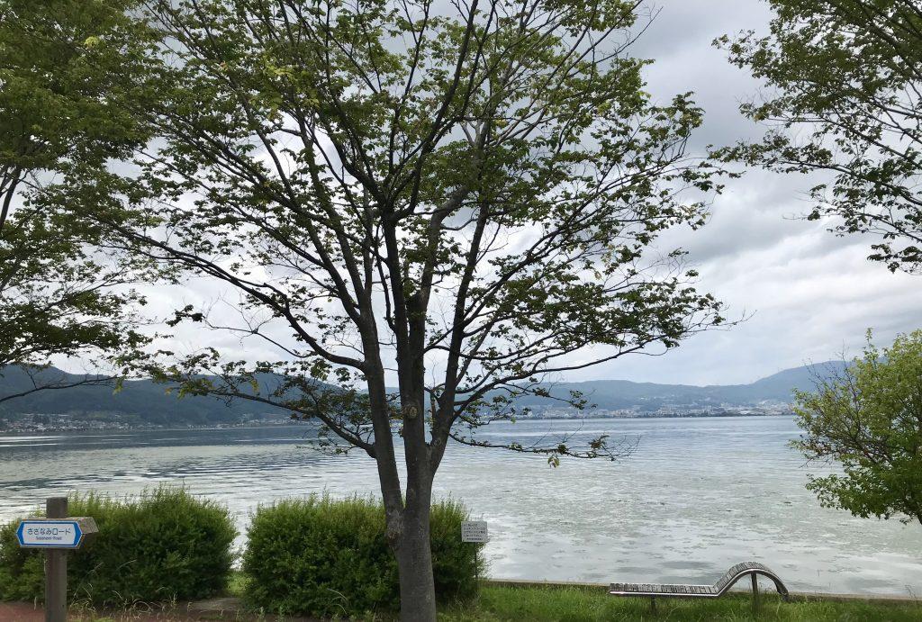 車窓からの諏訪湖