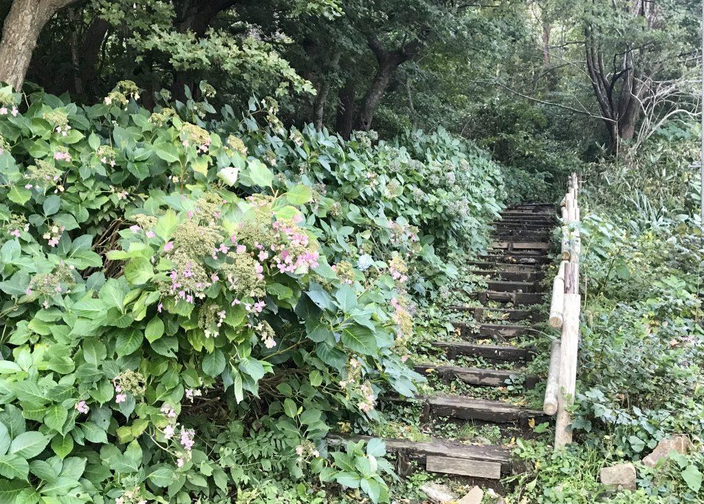 碧血碑への階段