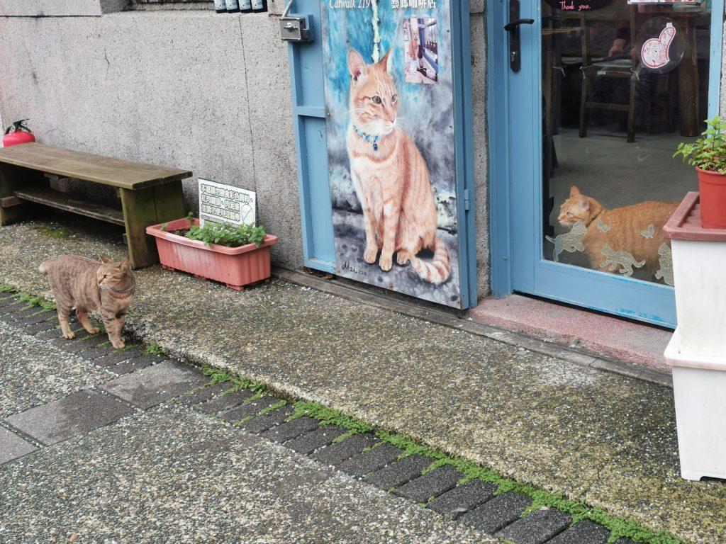 侯硐の猫カフェ